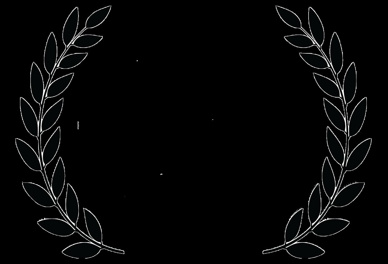 Czech Film Festival Award